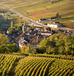 © BIVB / ARM.COM Landscape in the wine growing region in the Côte de Beaune.