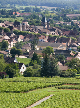 © BIVB / ARM.COM Landscape in the wine growing region of the Côte de Chalonnaise